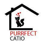 Purrfect Catio